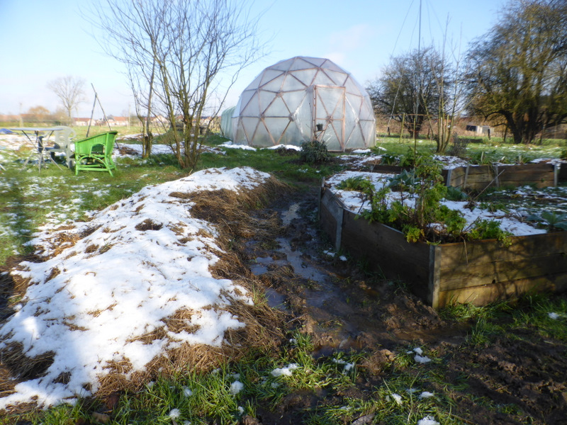 Dans notre jardin d'hiver